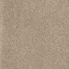 Shaw Floors SFA Inspiring Mushroom 00703_EA508
