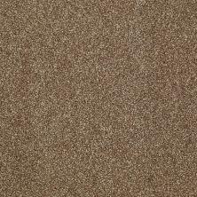 Shaw Floors SFA Inspiring Travertine 00711_EA508