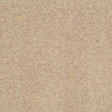 Shaw Floors SFA O'donnell Wild Straw 00106_EA510