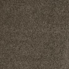Shaw Floors SFA O'donnell Fairview Taupe 00721_EA510