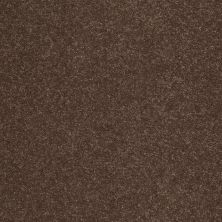 Shaw Floors SFA Shingle Creek II 12′ Wooden Box 00721_EA514
