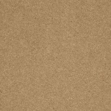 Shaw Floors SFA Shingle Creek II 12′ Cork 00722_EA514