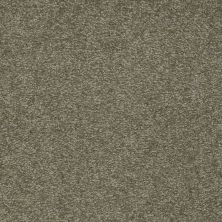 Shaw Floors SFA Shingle Creek III 12′ Alpine Fern 00305_EA516