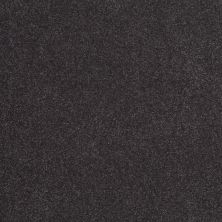 Shaw Floors SFA Shingle Creek III 12′ Dutch Boy 00422_EA516