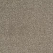 Shaw Floors SFA Shingle Creek III 12′ Wood Smoke 00520_EA516