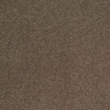 Shaw Floors SFA Shingle Creek III 12′ Castle Rock 00521_EA516