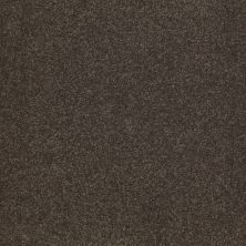 Shaw Floors SFA Shingle Creek III 12′ Arrowhead 00522_EA516