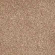 Shaw Floors SFA Shingle Creek III 12′ Muffin 00700_EA516