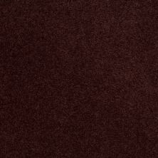 Shaw Floors SFA Shingle Creek III 12′ Rouge Red 00820_EA516