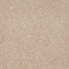 Shaw Floors SFA Shingle Creek III 15′ Adobe 00108_EA517