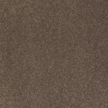 Shaw Floors SFA Shingle Creek III 15′ Castle Rock 00521_EA517