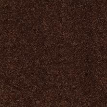 Shaw Floors SFA Shingle Creek III 15′ Coffee Bean 00711_EA517