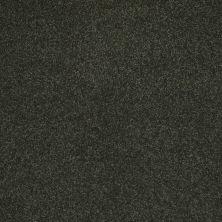 Shaw Floors SFA Shingle Creek Iv 12′ Lilly Pad 00320_EA518