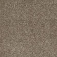 Shaw Floors SFA Shingle Creek Iv 12′ Wood Smoke 00520_EA518