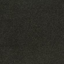 Shaw Floors SFA Shingle Creek Iv 15′ Lilly Pad 00320_EA519