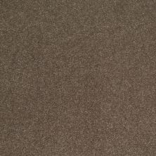 Shaw Floors SFA Shingle Creek Iv 15′ Castle Rock 00521_EA519