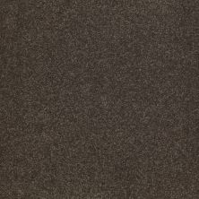 Shaw Floors SFA Shingle Creek Iv 15′ Arrowhead 00522_EA519