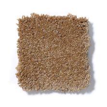 Shaw Floors SFA Shingle Creek Iv 15′ Peanut Brittle 00702_EA519