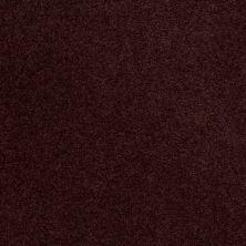 Shaw Floors SFA Shingle Creek Iv 15′ Rouge Red 00820_EA519