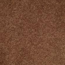 Shaw Floors SFA Turn The Page I 12′ Pottery 00600_EA523