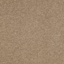 Shaw Floors SFA Turn The Page II 12′ Honeycomb 00200_EA524
