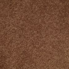 Shaw Floors SFA Turn The Page II 12′ Pottery 00600_EA524