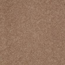 Shaw Floors SFA Turn The Page II 12′ Pebble Creek 00701_EA524
