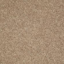 Shaw Floors SFA Rendezvous (s) Prairie Dust 00117_EA526