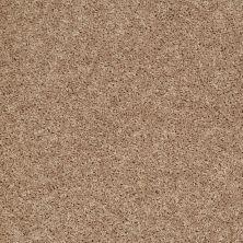Shaw Floors SFA Rendezvous (s) Saddle Tan 00710_EA526