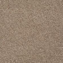 Shaw Floors SFA Totally Convinced Cappuccino 00756_EA558