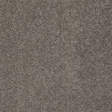 Shaw Floors SFA My Inspiration II Rustic Elegance 00752_EA560