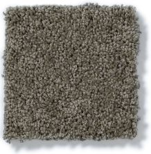 Shaw Floors SFA My Inspiration III Grey Flannel 00501_EA561
