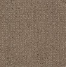 Shaw Floors SFA My Inspiration Pattern Flax 00751_EA562