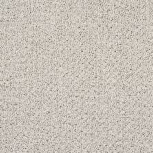 Shaw Floors SFA Artist View Loop Textured Canvas 00150_EA566