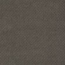 Shaw Floors SFA Artist View Loop Vintage Leather 00755_EA566