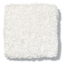 Shaw Floors Anso Colorwall Silver Texture Snow Cap 00122_EA570