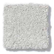 Shaw Floors Anso Colorwall Silver Texture Putty 00125_EA570