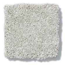 Shaw Floors Anso Colorwall Silver Texture Waikiki Sand 00131_EA570