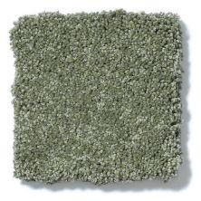 Shaw Floors Anso Colorwall Silver Texture Toscana Italia 00337_EA570
