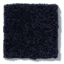 Shaw Floors Anso Colorwall Silver Texture English Royal Navy 00433_EA570