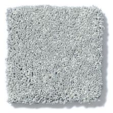 Shaw Floors Anso Colorwall Silver Texture Fossil 00541_EA570
