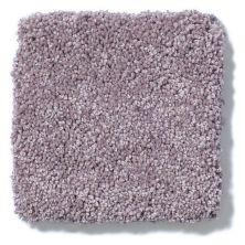 Shaw Floors Anso Colorwall Silver Texture Summer Heath 00931_EA570