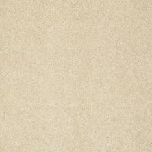 Shaw Floors Anso Colorwall Gold Texture Chenille Soft 00110_EA571