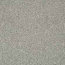 Shaw Floors Anso Colorwall Gold Texture Elephant Gray 00534_EA571