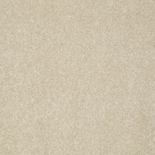 Shaw Floors Anso Colorwall Gold Texture Travertine 00702_EA571