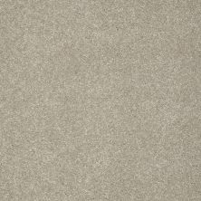 Shaw Floors Anso Colorwall Gold Texture Warm Oatmeal 00722_EA571