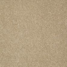 Shaw Floors Anso Colorwall Gold Texture Beach House 00771_EA571