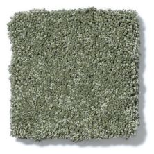 Shaw Floors Anso Colorwall Platinum Texture 12′ Toscana Italia 00337_EA572