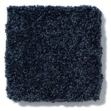 Shaw Floors Anso Colorwall Platinum Texture 12′ Belize Blue 00437_EA572