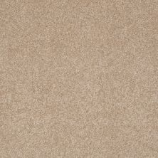 Shaw Floors Anso Colorwall Platinum Texture 12′ Townhouse Taupe 00700_EA572